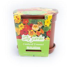 Set de cultivare Flori – Condurul doamnei