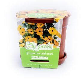 Set de cultivare Flori – Suzana cu ochi negri