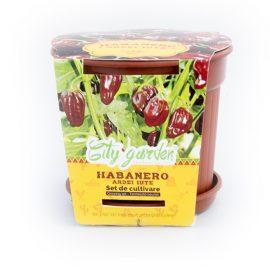 Set de cultivare – Ardei iute Mexican Habanero Chocolate