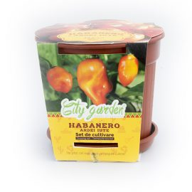 Set de cultivare – Ardei iute Mexican Habanero Orange