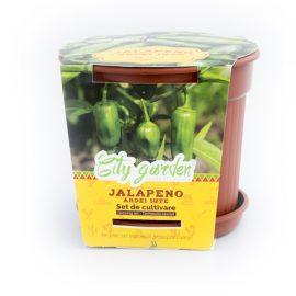 Set de cultivare – Ardei iute Mexican Jalapeno