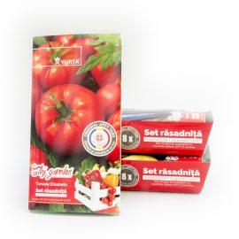 Set răsadniță medie – Tomate Elisabeta