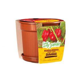 Set de cultivare – Ardei iute Mexican Habanero Roșu