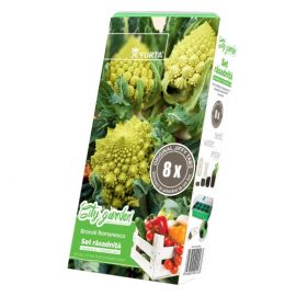 Set rasadnita medie – Broccoli Romanesco