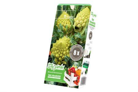 broccoli-romanesco