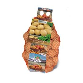 Cartofi albi de plantat – Bernina