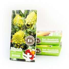 Set rasadnita medie broccoli