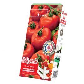 Set răsadniță medie – Tomate Amalia