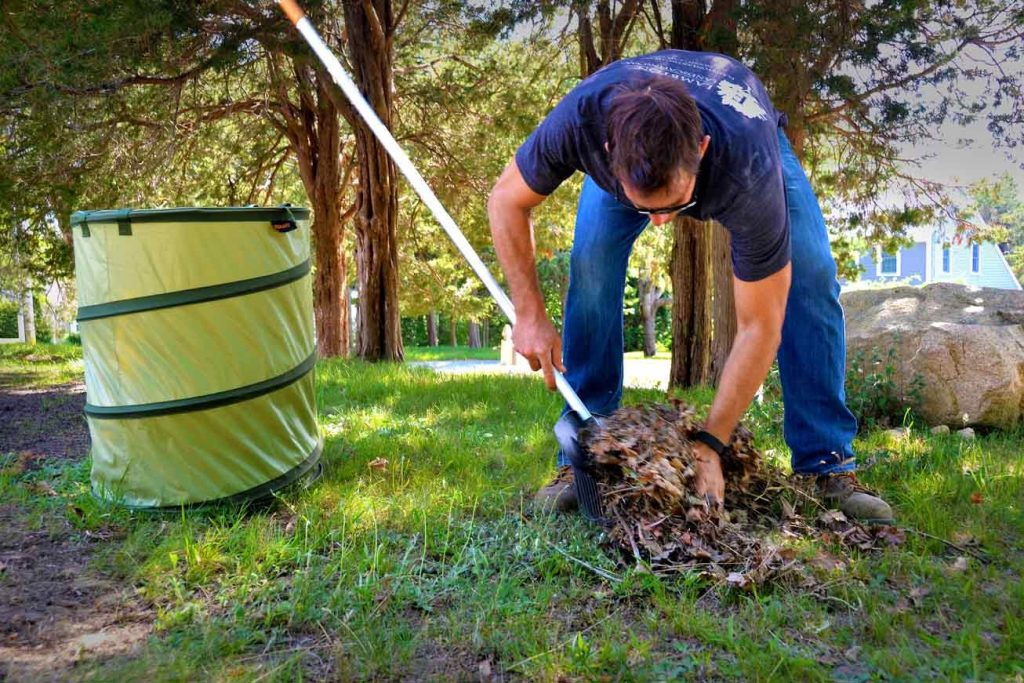 Imagini pentru spring clean garden