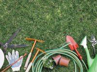 Lucrări în grădină/livada pentru luna martie